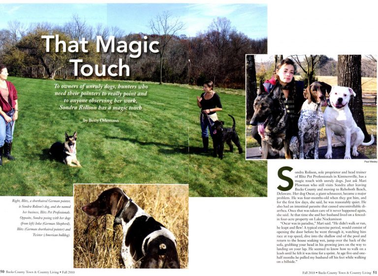Blitz Pet Professionals In the News