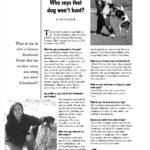 Schutzhund USA article
